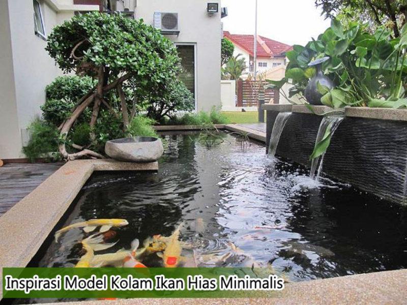 model desain kolam ikan hias minimalis 800x600 - Inspirasi Model Desain Kolam Ikan Minimalis